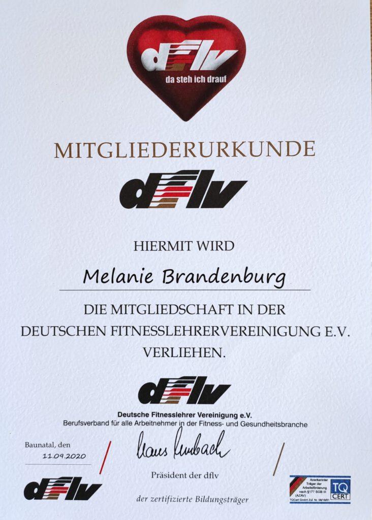 dflv Mitgliedsurkunde